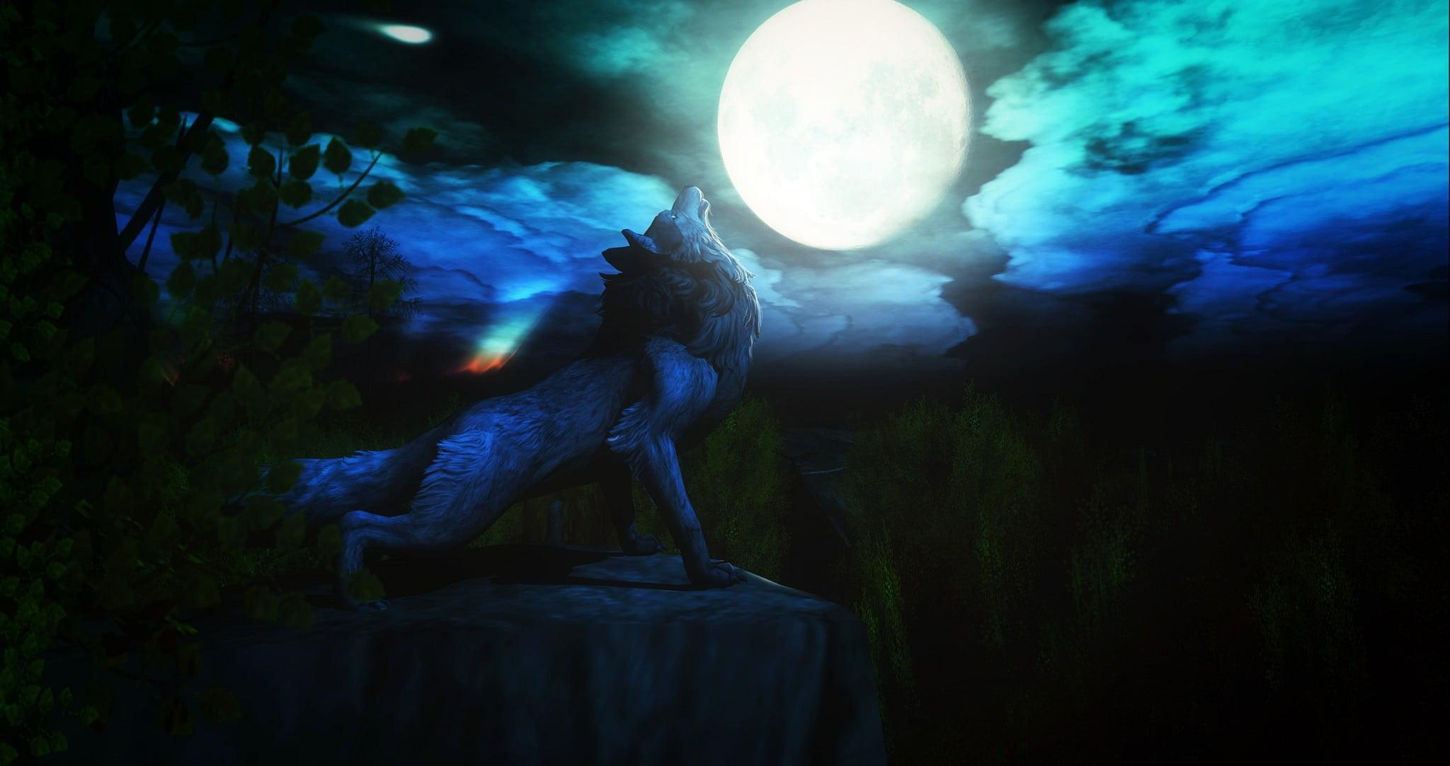 fantasy-art-moon-artwork-wolf-wallpaper