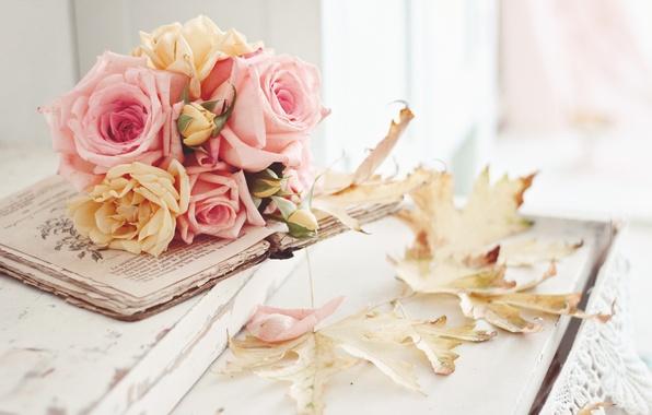cvety-listya-rozy-osen-1